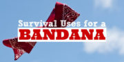 big-bandana-post-survive-ideas