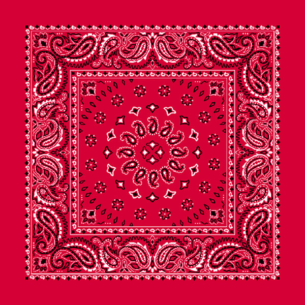 bb-red-paisely-product-1B